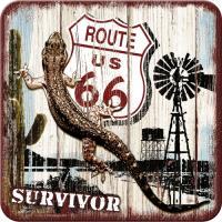 Route 66 Desert Survivor