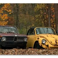 3 Käfer und BMW 1602